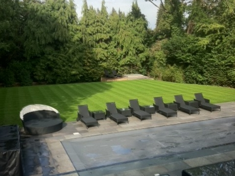 J & T Tree and Garden Services in Hertfordshire5