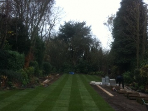 J & T Tree and Garden Services in Hertfordshire4