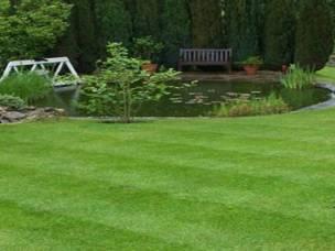 At AM Garden Maintenance in Hertfordshire