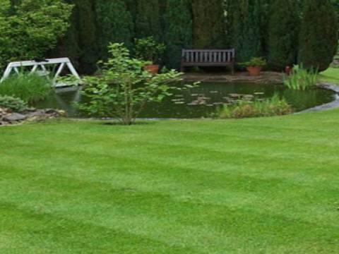 At AM Garden Maintenance1