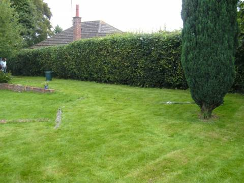 Hertfordshire Landscapes Tree And Garden Services3