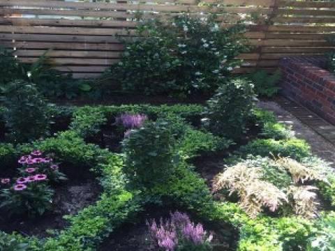 Hertfordshire Garden Design5