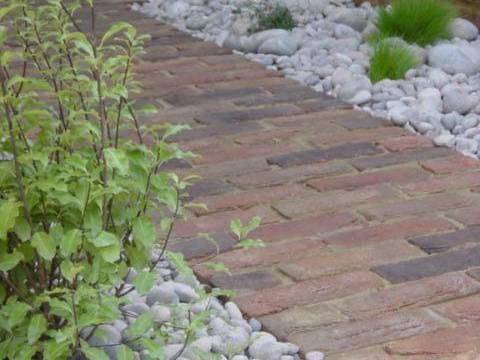 Iqon Gardening Services3