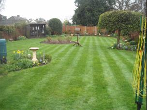 Lawn Master in Denbighshire
