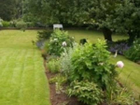Marks Garden Services 3