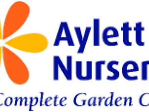 Ayletts Nursery in Hertfordshire