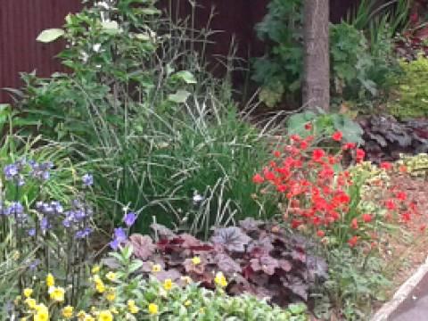 Kent Gardening & Tree Surgery1