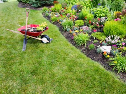 Julian Turner Garden Services 2
