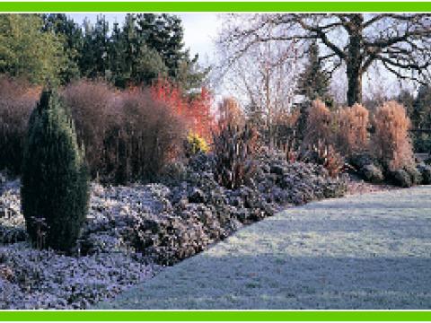Garden Maintenance Leicester2