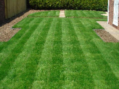 Garden Maintenance Leicester1