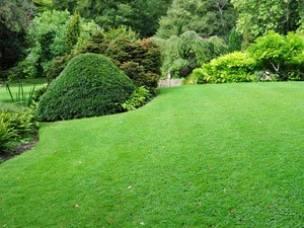 Garden Tamer in Leicestershire