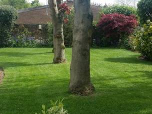 GARDENS  UNCOVERED in Leicestershire