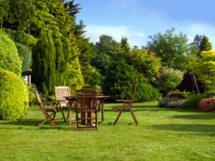 Tree, Hedge & Garden Services in Lincolnshire