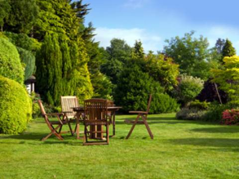 Tree, Hedge & Garden Services1