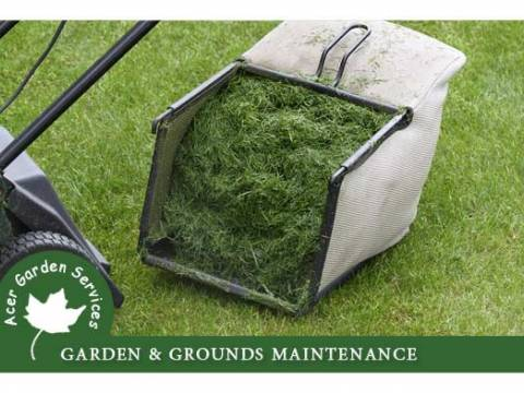Acer Garden Services 2