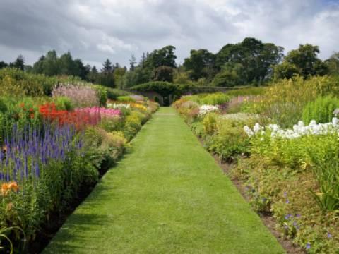 Kingfisher Gardening Services1