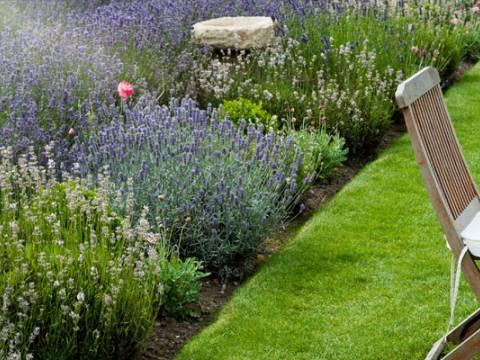 Ripon Gardening Services 2