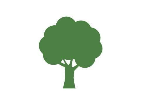 A.P Tree & Garden services1