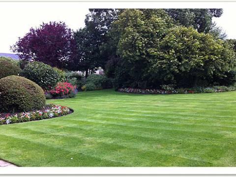 Cheviot Gardening Services3