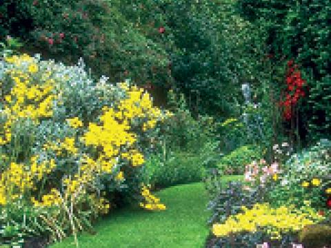 """Robinson""""s Garden Service3"""
