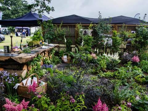 Marram Gardens1