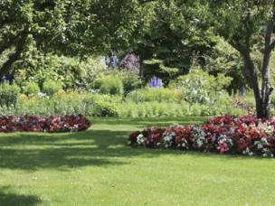 Lees Trees and Garden Services  in Shropshire