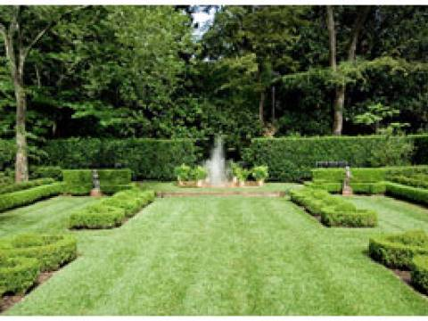 AYR Gardening Services2