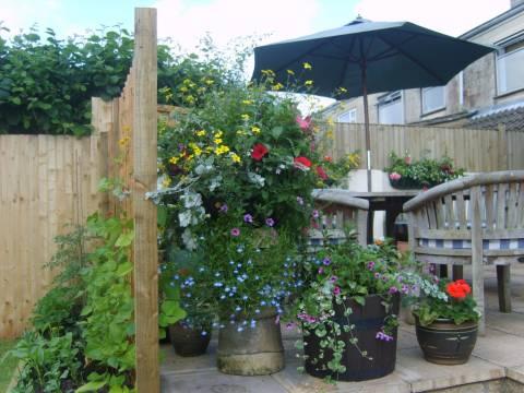 J&K Primrose Garden Maintenance 1
