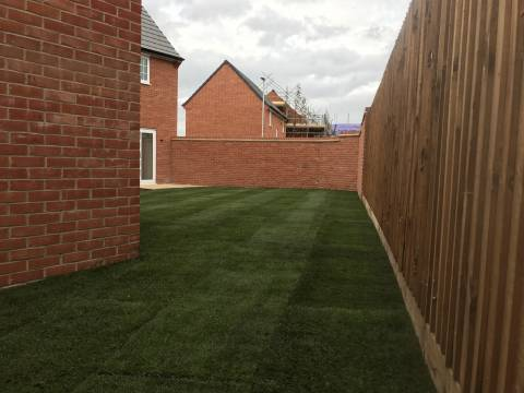 Mow and Grow Complete Lawn Care5