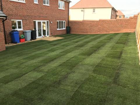 Mow and Grow Complete Lawn Care3