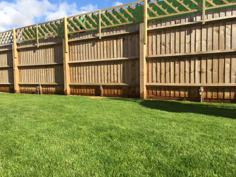 Mow and Grow Complete Lawn Care4