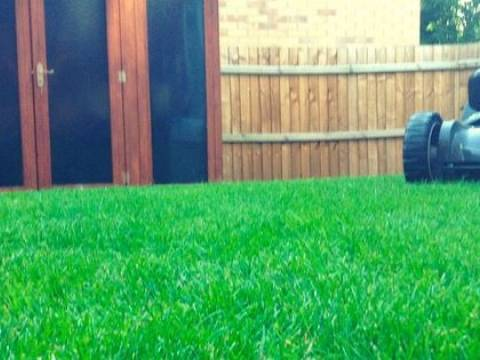 Mow and Grow Complete Lawn Care2