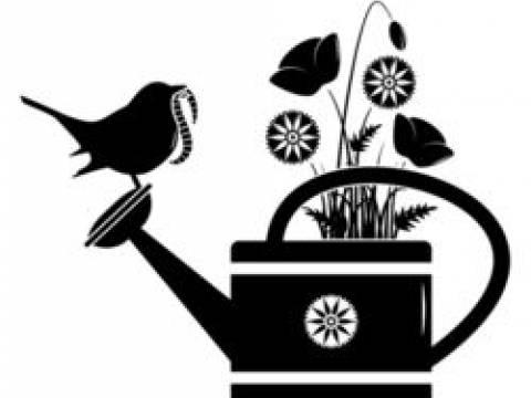 Lacewing Garden Services1