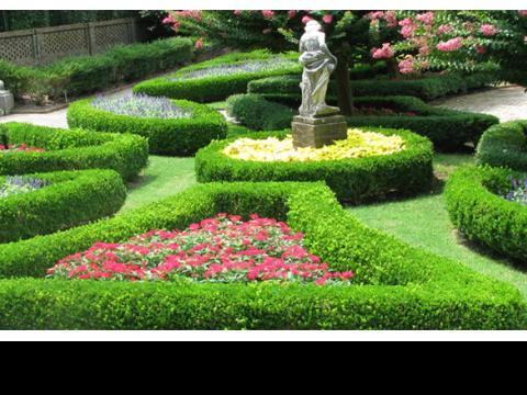 West London Gardeners 3