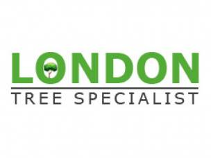 London Tree Specialist in Hertfordshire