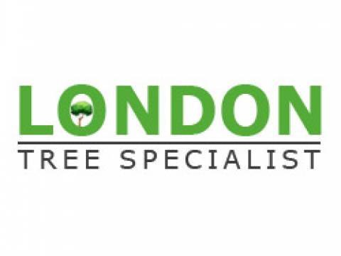 London Tree Specialist1