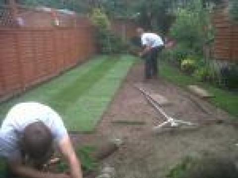 Cypress garden services 1