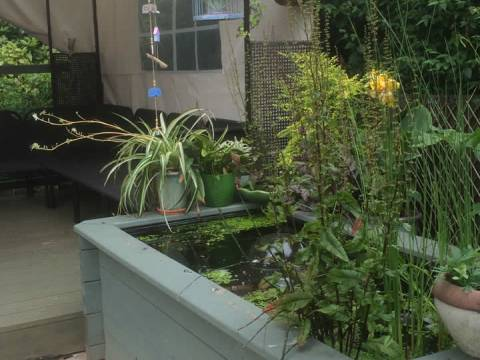 Garden Paradise4