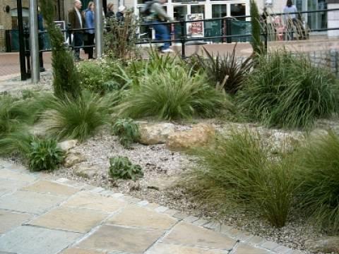 Eden Horticultural LTD3
