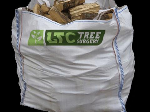 LTC Tree Surgery 5