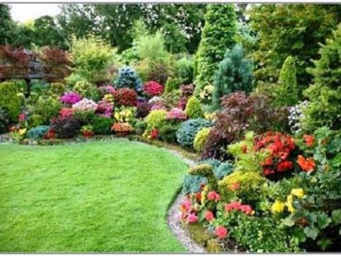 1st class garden service 1