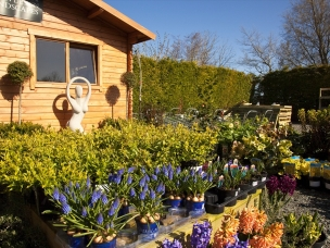Moota garden centre  in Cumbria