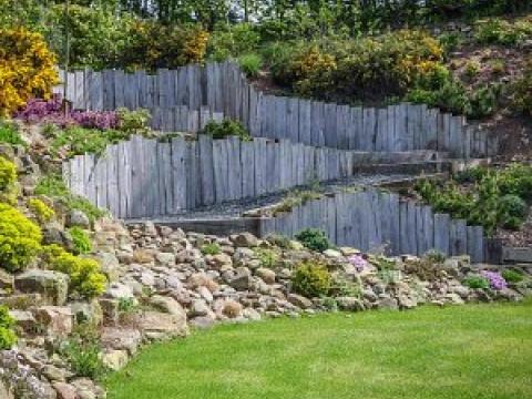 Buzzy Lizzie garden design 1