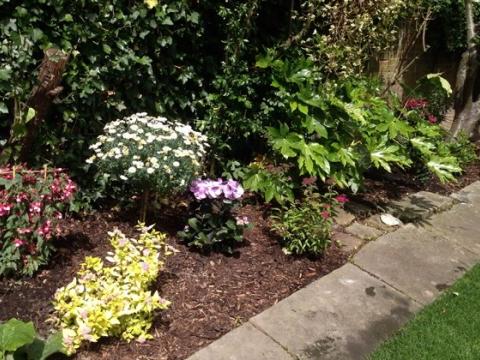 Fantastic Gardeners2