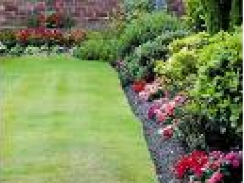 Springwood Gardens 2