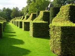 Essex Garden Care in Essex