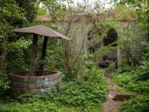 Essex Garden Care2