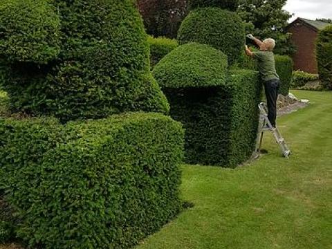 K Gardening Sevenoaks Ltd 1