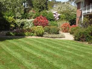 CJ Garden Service Ltd in Hampshire