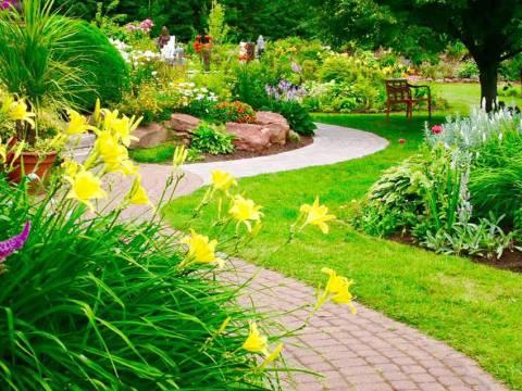 CJ Garden Service Ltd3